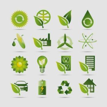 Strategia di marketing per prodotti biologici