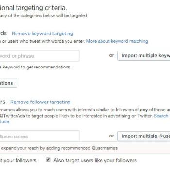 criterios de targeting de Twitter Ads