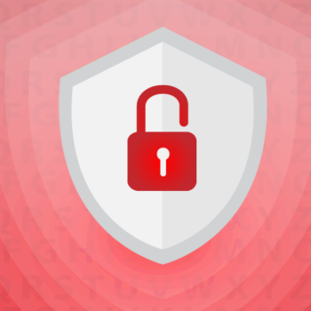 proteger los datos de tu base de datos