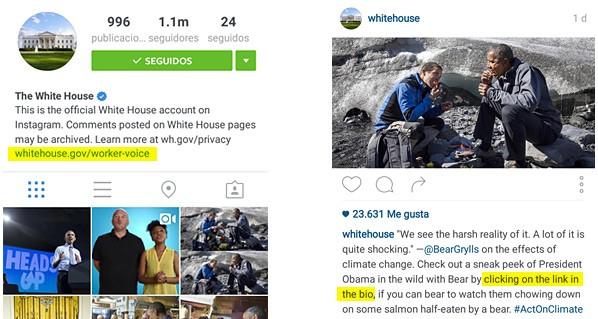 obtener tráfico con la bio en instagram