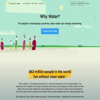 ejemplos de campañas de ong