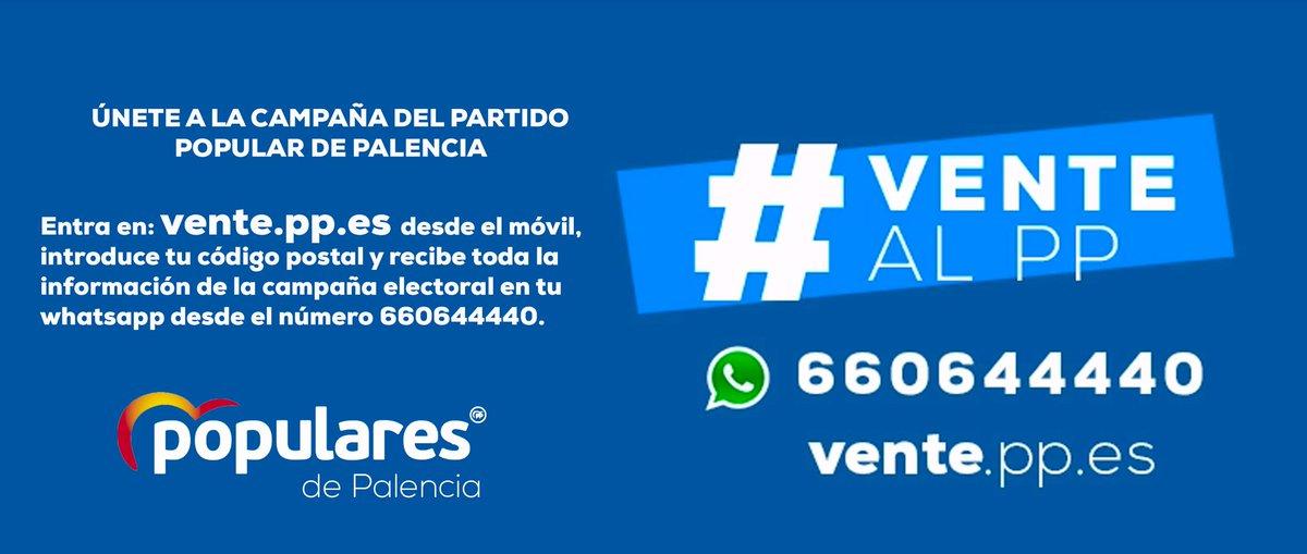 pp campaña por whatsapp