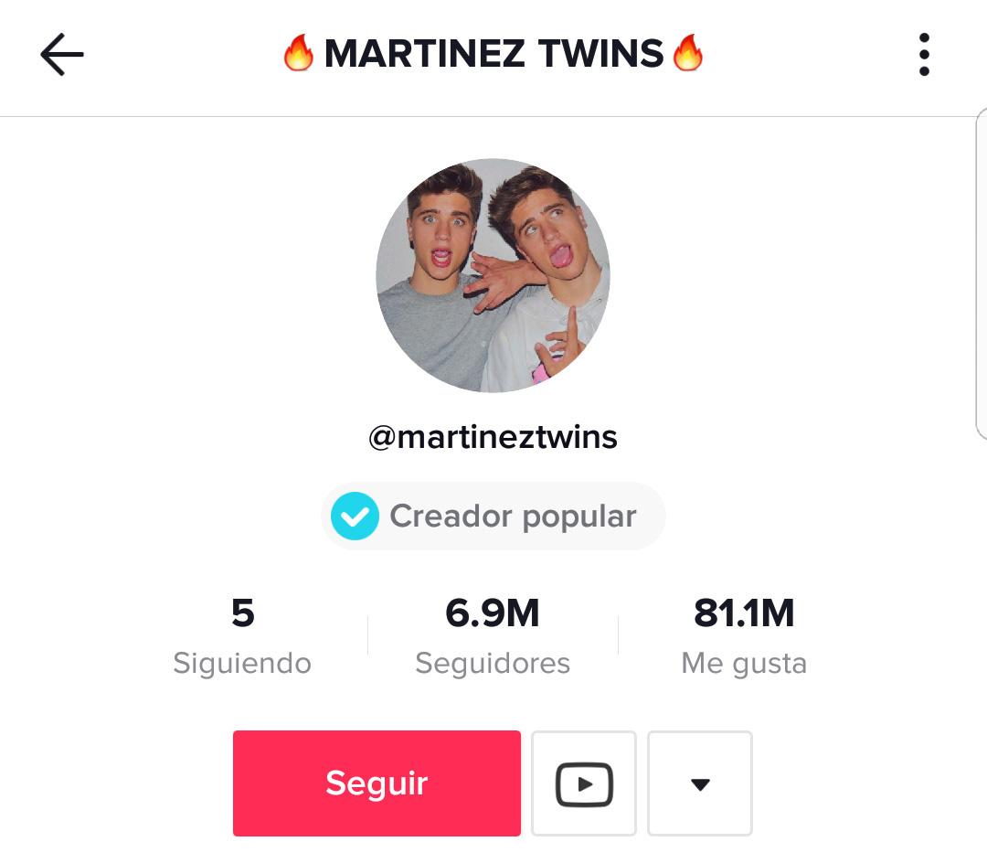 Martínez Twins