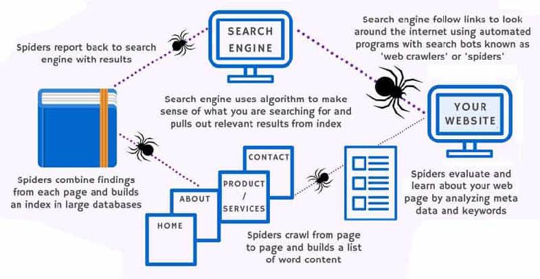 Cómo funcionan las arañas de Google