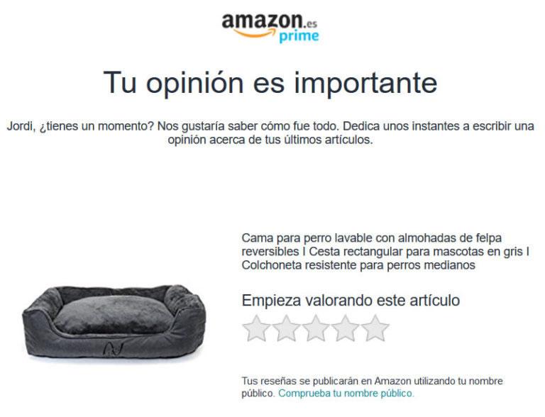 valoraciones positivas en Amazon: opiniones