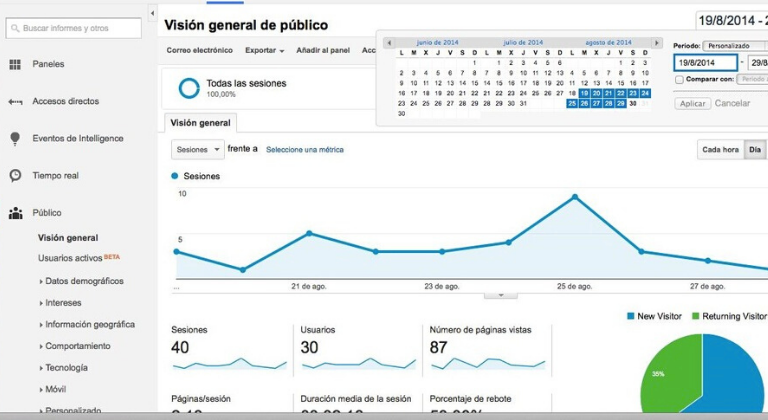 Vista del público en Google Analitycs