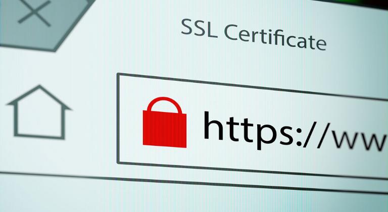 Omitir el certificado SSL